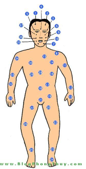 not ruoi tren co the dan ong Xem bói toán ý nghĩa nốt ruồi ở mặt và trên thân thể đàn ông