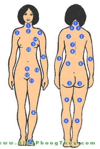 not ruoi tren co the phu nu Xem bói toán ý nghĩa nốt ruồi trên thân thể phụ nữ (mặt sau)